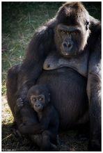 Mutter und Kind...