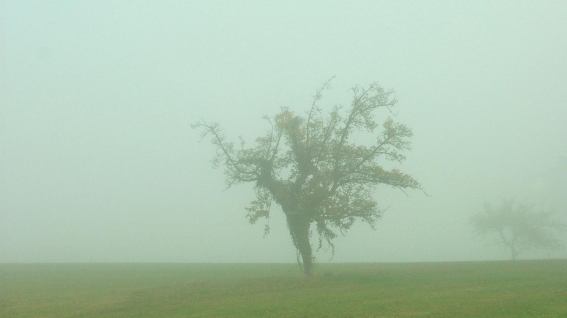 MW 2003.11.05. einsam