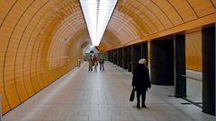 MW 2008.11.26 .  *YT Wege - 49