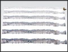 MW 99173 Schnee Schnee Schnee Schnee Schnee Schnee