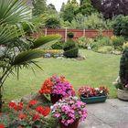 My back Garden-2006!