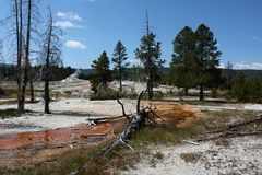 My Colors of Yellowstone...