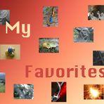 my favorites