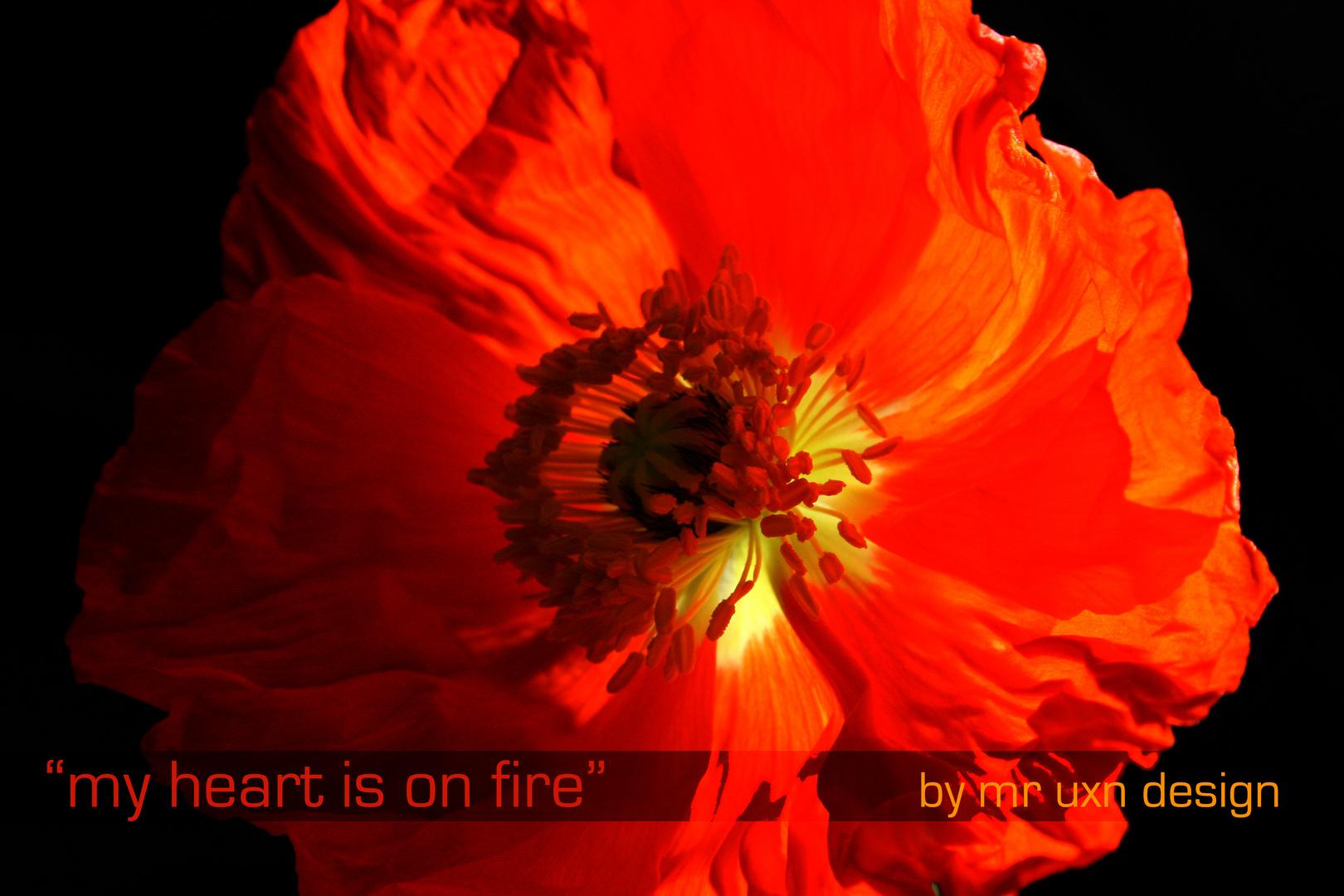 """""""my heart is on fire"""""""