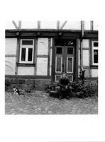 my lovely halberstadt 2 von 6