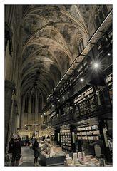 My Maastricht Diary #12
