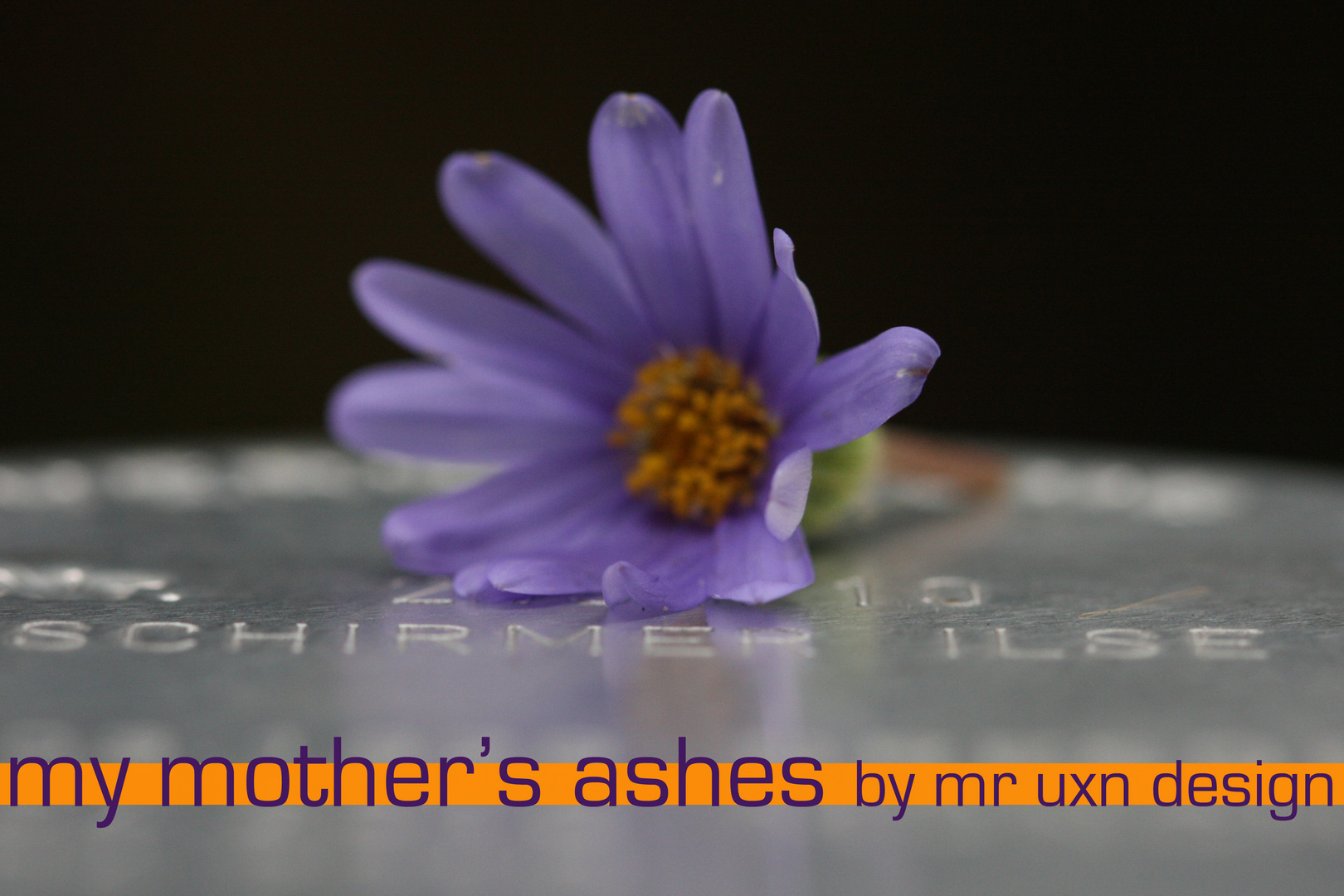 """""""MY MOTHER'S ASHES"""""""