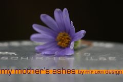 """MY MOTHER'S ASHES"""
