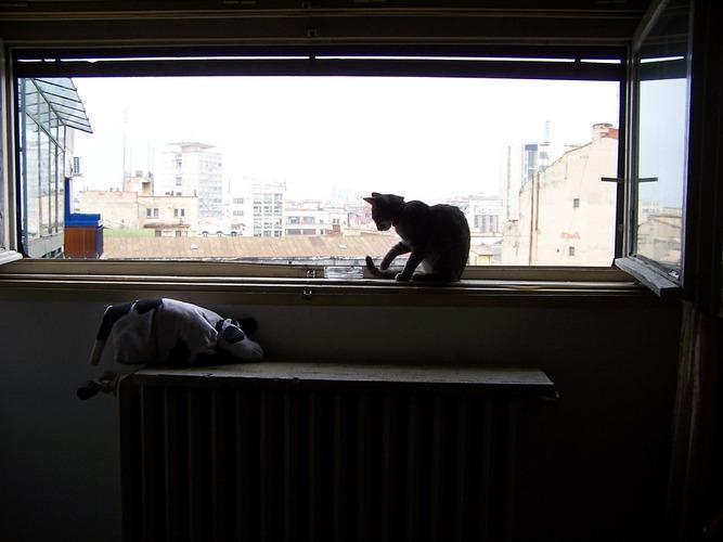 My own window..