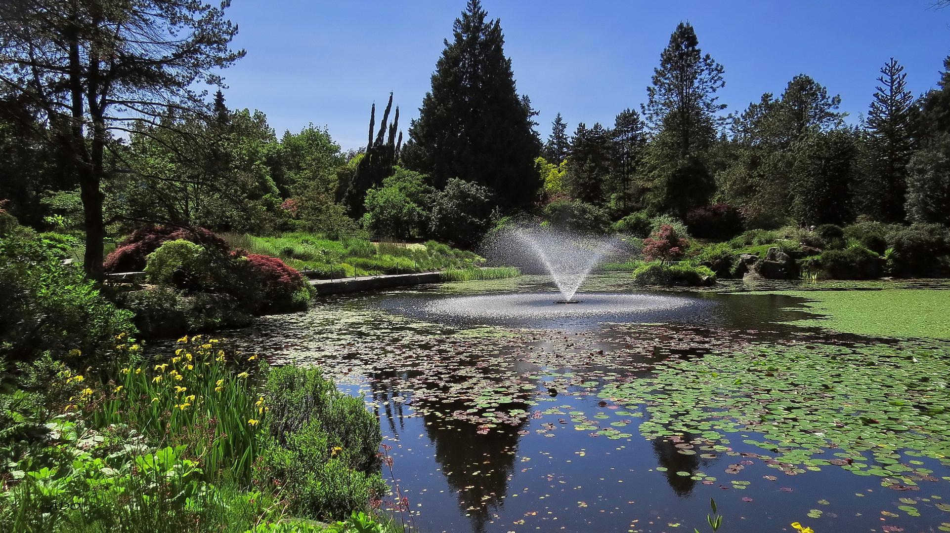 My Park