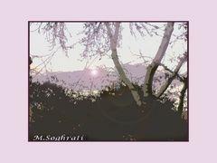 My pink sunset