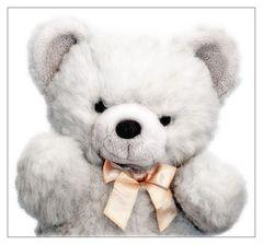 ::::: My Teddybear :::::