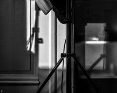 my world in shadows