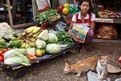 Myanmar (10)