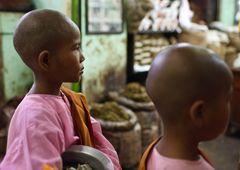 Myanmar (13)