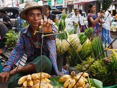 Myanmar (20)