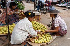 Myanmar (59)