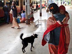 Myanmar (74)