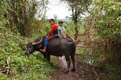 Myanmar (78)
