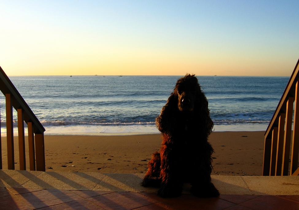 Myself bei Sonnenaufgang :-)