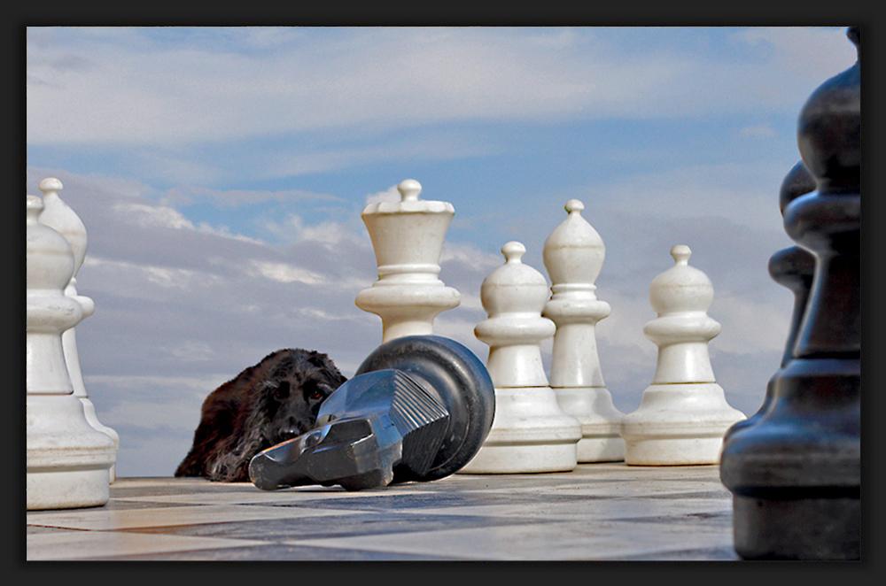 Myself .... chess location # 1