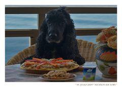 Myself laedt zu meiner 12. Birthday-Pizza, let's party :-)