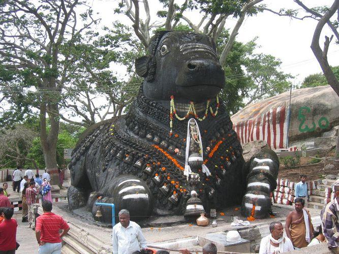 Mysore - Bullentempel: Nandi