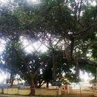 Mysore city