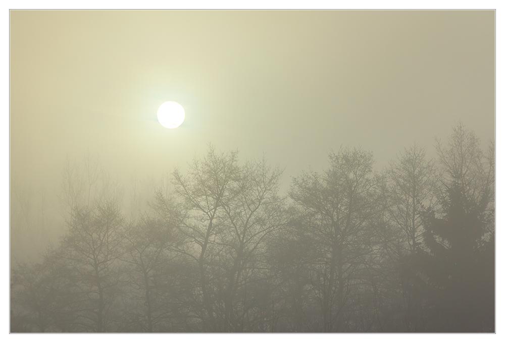 Mysteriöses Morgenlicht - denn so noch nicht gesehen...