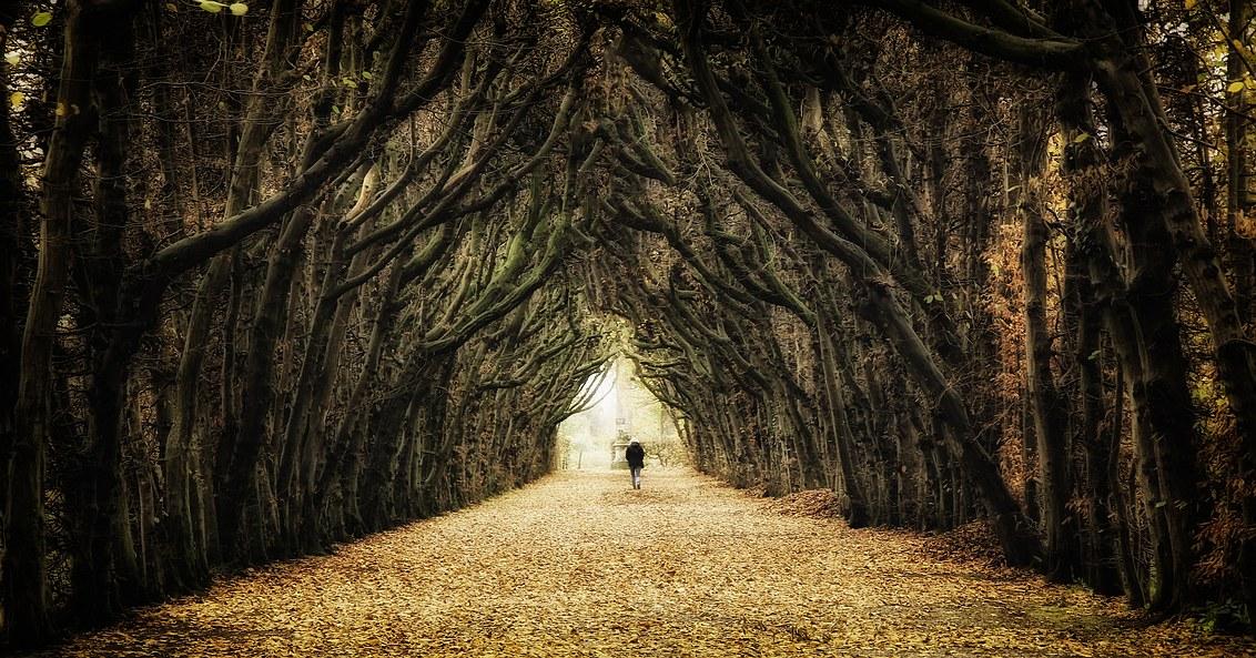 Mysterious lane
