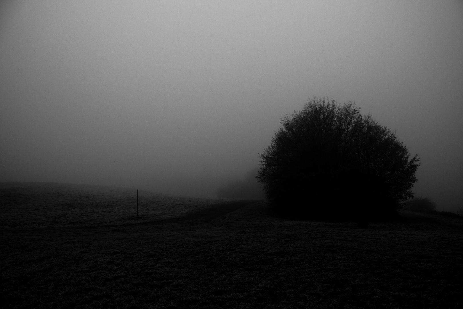 Mysterium Nebel