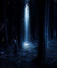 ~ mystic light ~