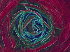 Mystic Rose XX