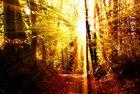 * Mystic Sunset *