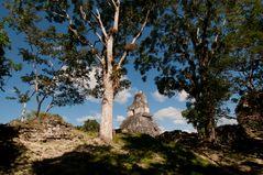 Mystic Tikal