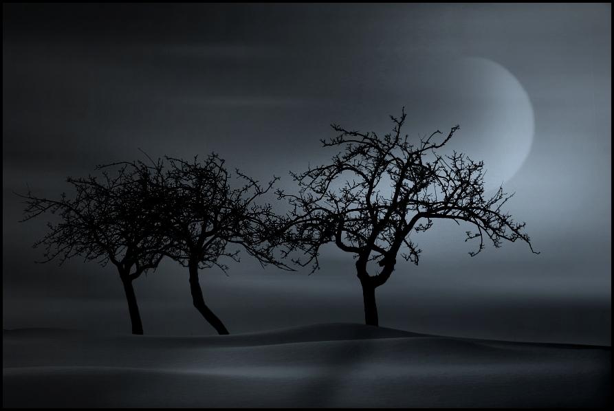 mystical landscapes,,,3