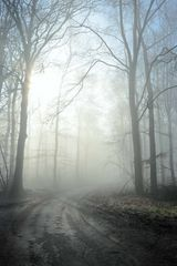 Mystische Wege