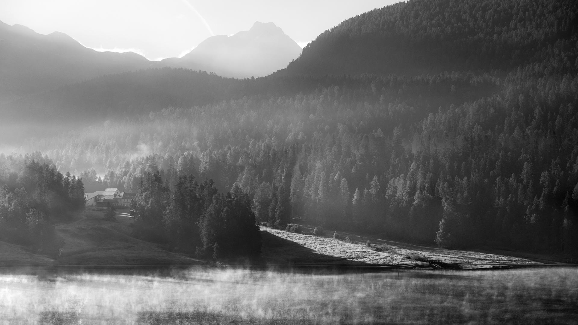 mystischer Morgen am St. Moritzersee