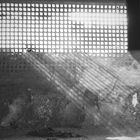 Mytical Window