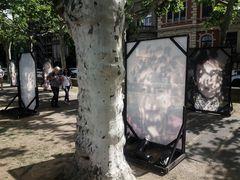 MZ Fotoausstellung Rheinufer J5-19 Doku +1Foto AKTUELL