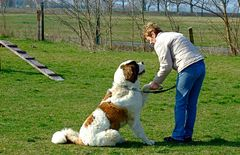 Na bitte***Doch schon was gelernt bei der Hundeschule***