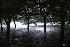 Nach einem Monsunregen...
