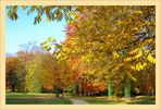 Nachlese Herbst 2010 ... (7)