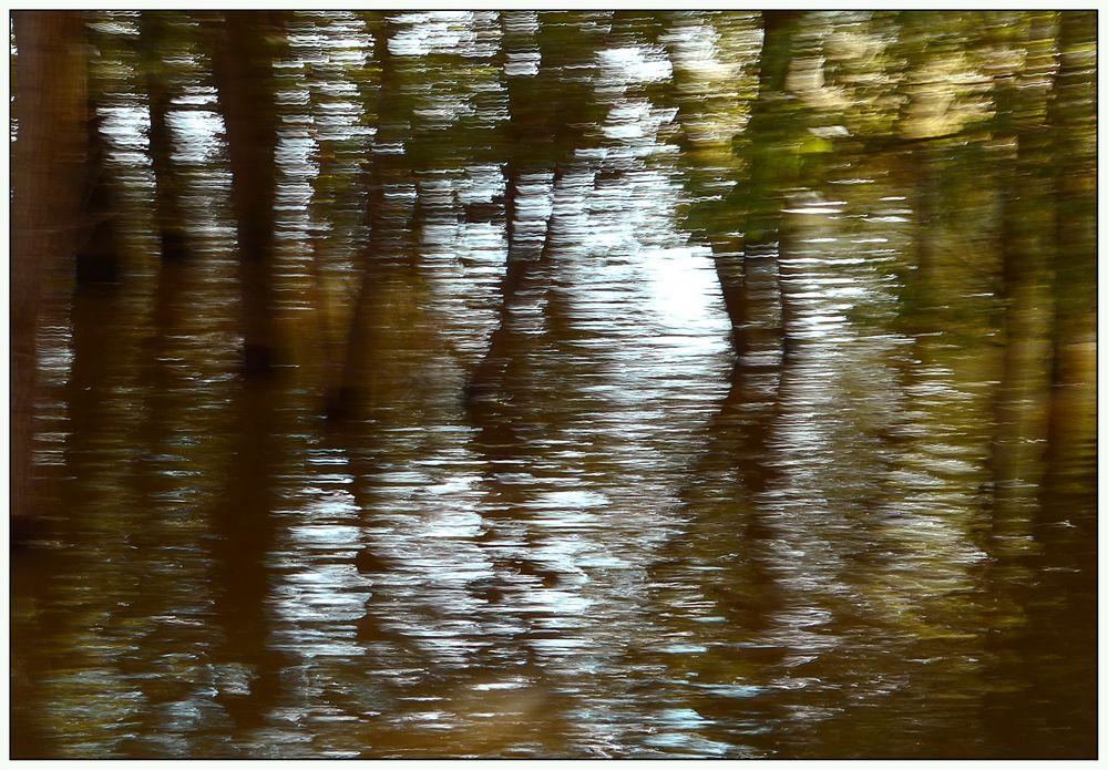 Nachmittags am Fluss