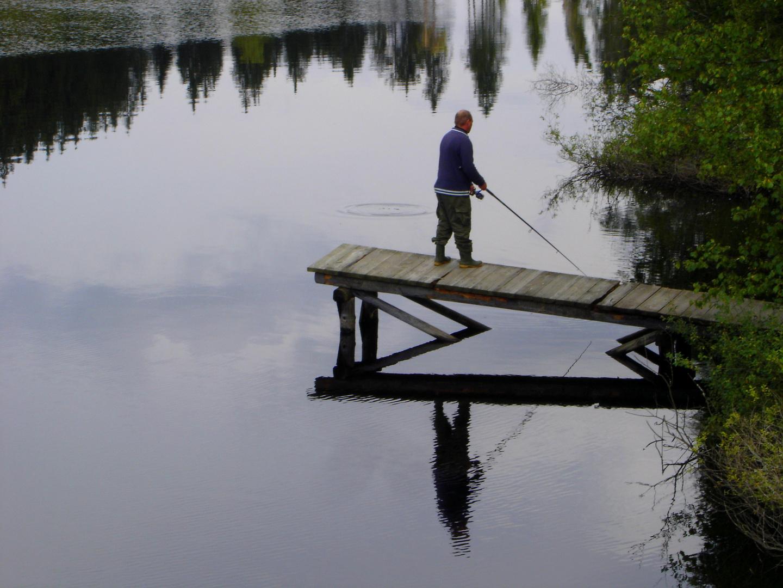 Nachmittags am Teich