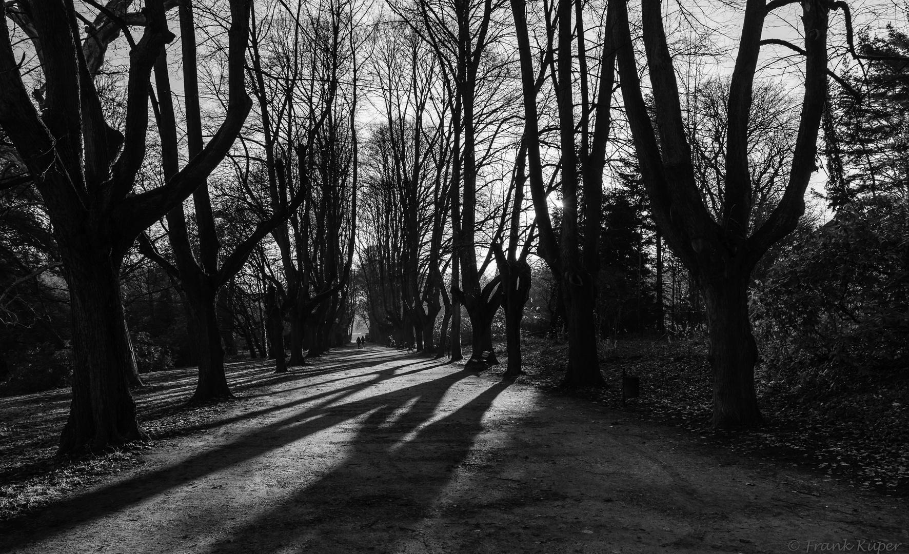 Nachmittags im Park