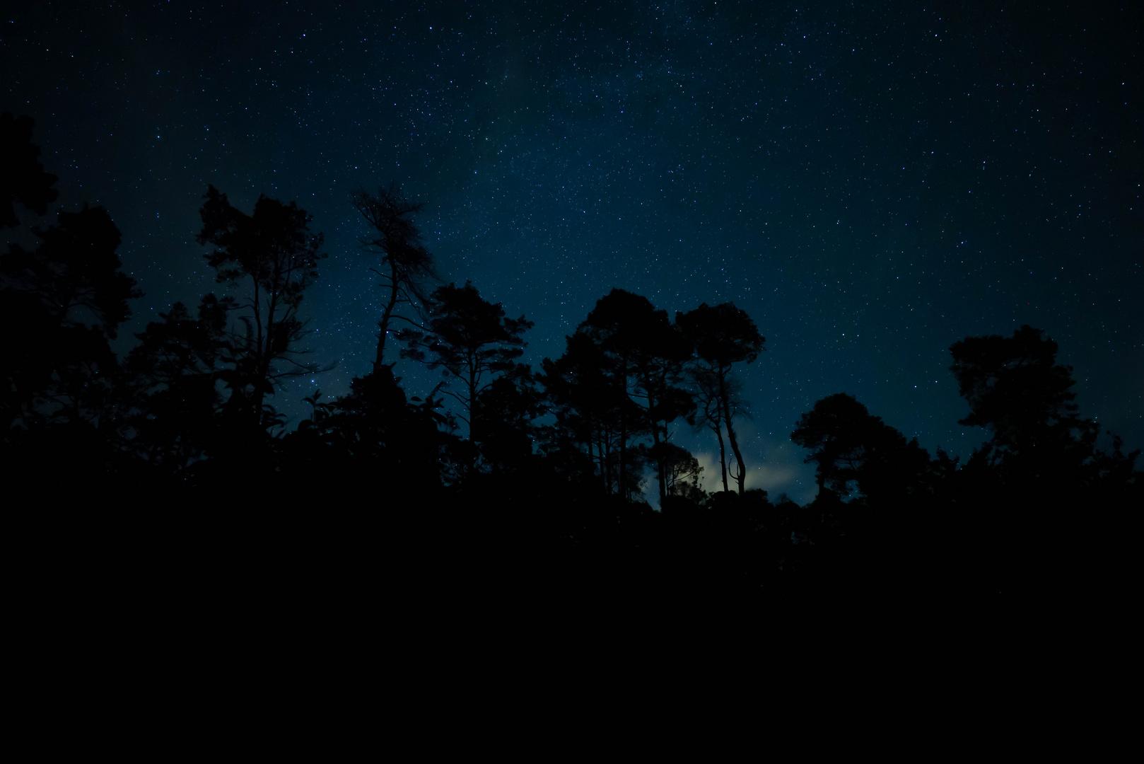 Nacht mit Sternen