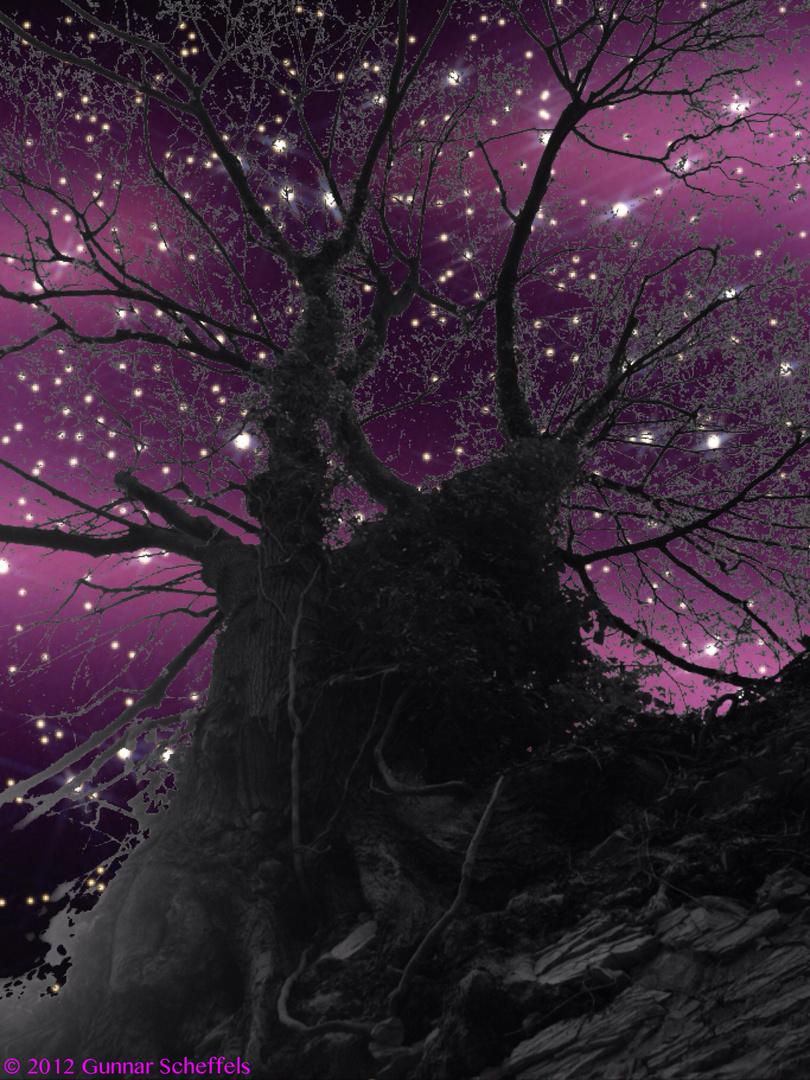Nacht-Stimmung Part.2