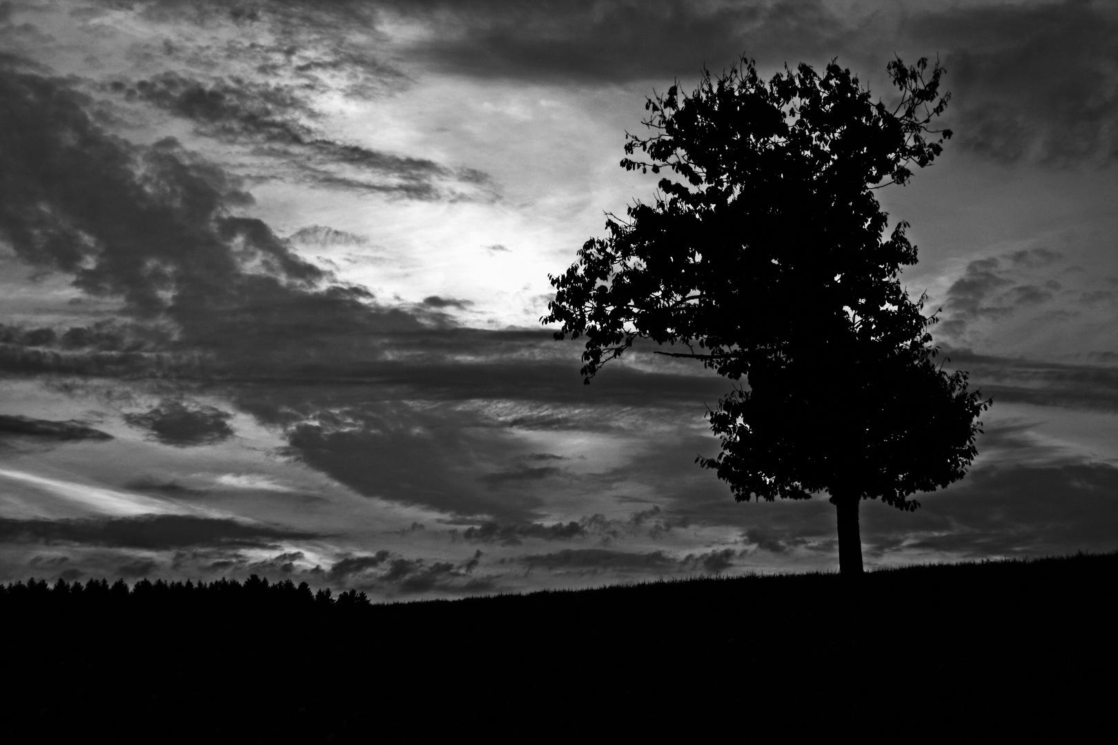 Nacht über dem Schwarzwald