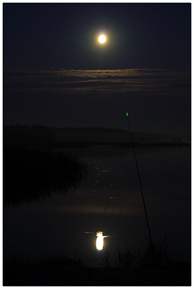 Nachtangeln am Vänern